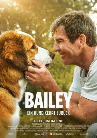"""Nichts für Zyniker und Freunde vielschichtiger Charaktere, aber dennoch ein Fest für Fans des ersten Teils um eine treue Hundeseele: Gail Mancusos Sequel """"Bailey - ein Hund kehrt zurück""""."""