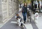 CJ (Kathryn Prescott) schlägt sich in New York als Hundesitterin durch.
