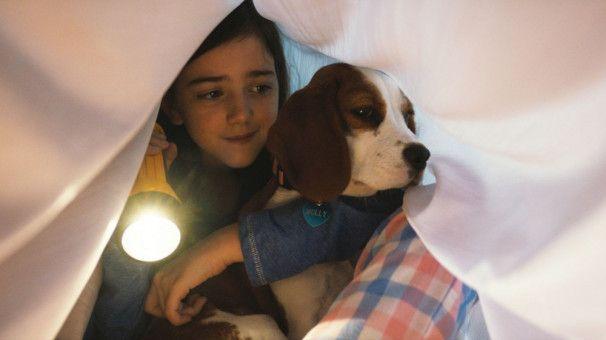 Welpe Molly und die junge CJ (Abby Ryder Fortson) stehen gemeinsam ein Gewitter durch.