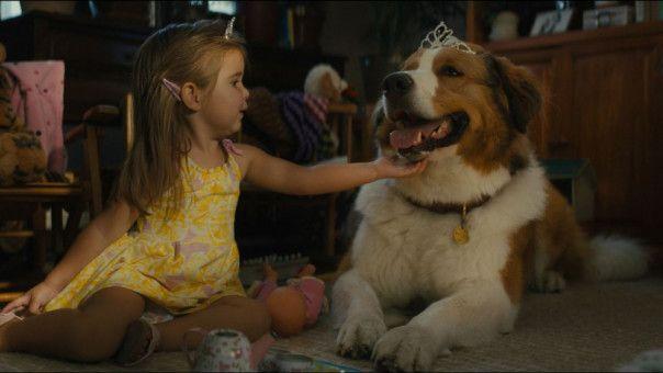 Bailey liebt Ethans und Hannahs Enkeltochter CJ (Emma Volk) über alles.