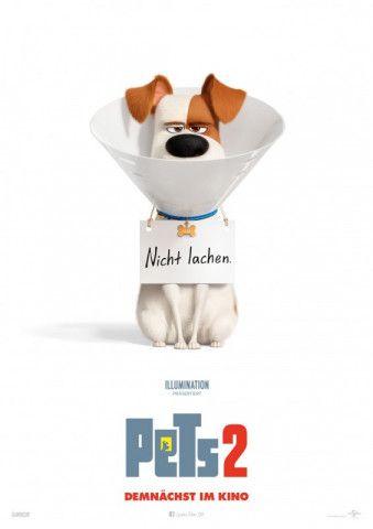 """In """"Pets 2"""" gibt es ein zum Teil sehr berührendes Wiedersehen mit den beliebten Haustieren aus dem ersten Teil der Animationsreihe."""