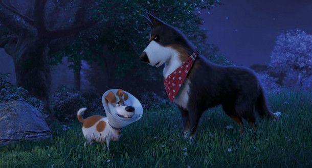Rooster (rechts) lehrt Max, sich seinen Ängsten zu stellen und sich zuallererst von seinem dämlichen Kragen zu befreien.