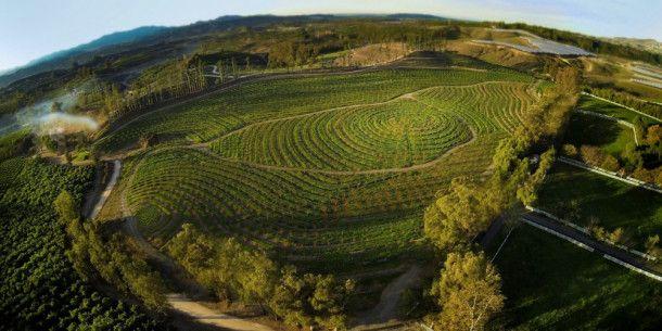Wahre Schönheit gekoppelt mit Zweckmäßigkeit: die Apricot Lane Farm von oben.