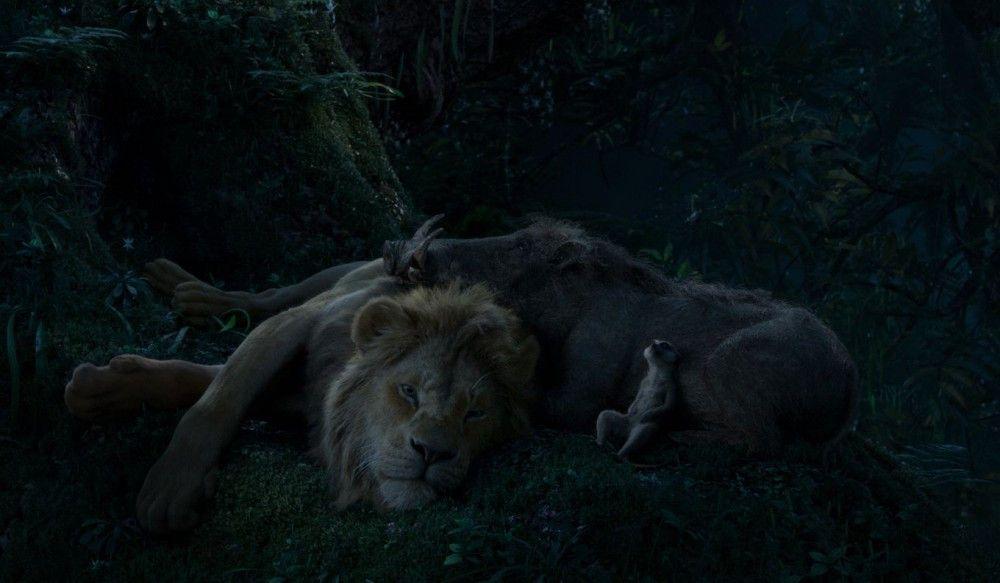 Simba, Pumbaa und Timon fragen sich erneut, was es mit dem Sternenhimmel über ihnen auf sich hat.