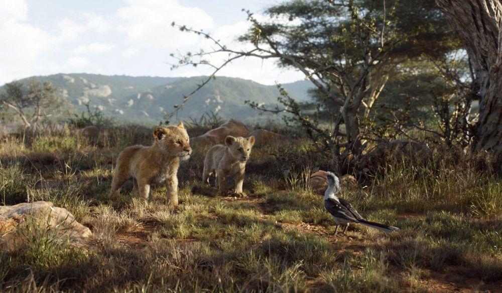 Simba und Nala wollen verbotenerweise einen Ausflug zum Elefantenfriedhof machen, müssen vorher aber noch an einem wachsamen Vogel vorbei.