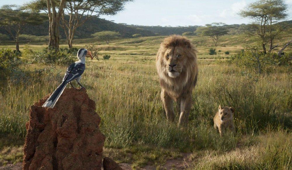 Haushofmeister Zazu erstattet Mufasa und seinem Sohn Simba täglich Bericht.