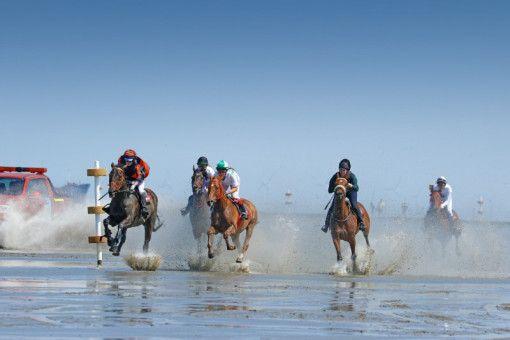 """Das """"Duhner Wattrennen"""" bietet Pferd und Reiter ein ungewohntes Geläuf."""