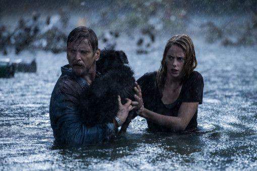 Nicht ohne unseren Hund! Haley (Kaya Scodelario) und ihr Vater Dave (Barry Pepper) kämpfen sich durch die Fluten.