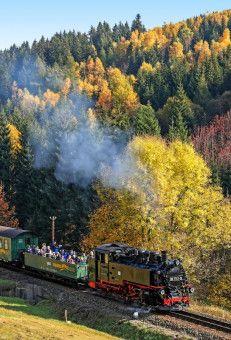 Beim Schmalspurbahnfestival feiern Dampflokomotiven ein Revival.