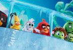 """Namhafte Synchronsprecher sorgen bei """"Angry Birds 2 - Der Film"""" für gute PR. Mit dabei sind unter anderem Axel Prahl, Axel Stein, Christoph Maria Herbst, Ralf Schmitz und Anke Engelke."""