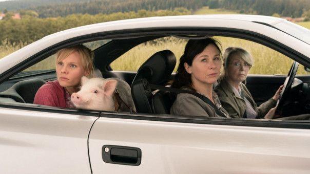 """Die """"Highspeed Girls"""" gemeinsam mit Schweinchen Paul auf Achse (von links): Rosalie Thomass, Bettina Mittendorfer und Gisela Schneeberger."""