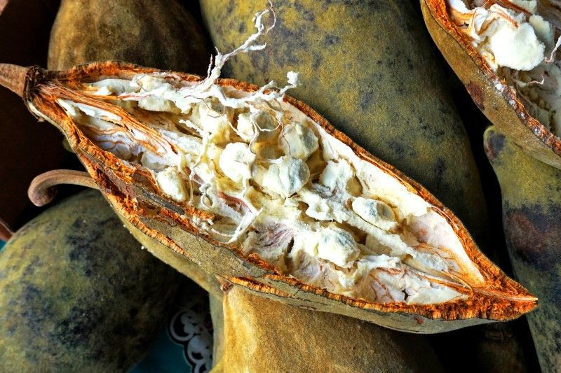 Das Fruchtfleisch der Baobab enthält Ballaststoffe, Eisen, Kalzium und Vitamin C.