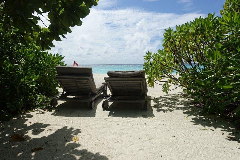 Zwischen Grünpflanzen am Strand liegen und in die Ferne träumen – das gehört zu einem Malediven-Urlaub dazu.