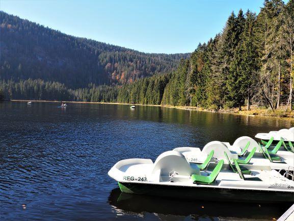Wer mit dem Tretboot die idyllische Umgebung genießen will, ist am Arbersee genau richtig.