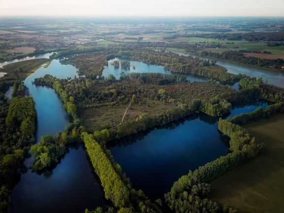 Die Feuchtwiesen und Auenwälder auf der Bislicher Insel im Kreis Wesel sind Oasen der Ruhe.
