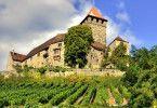 Die Burg Lichtenberg.