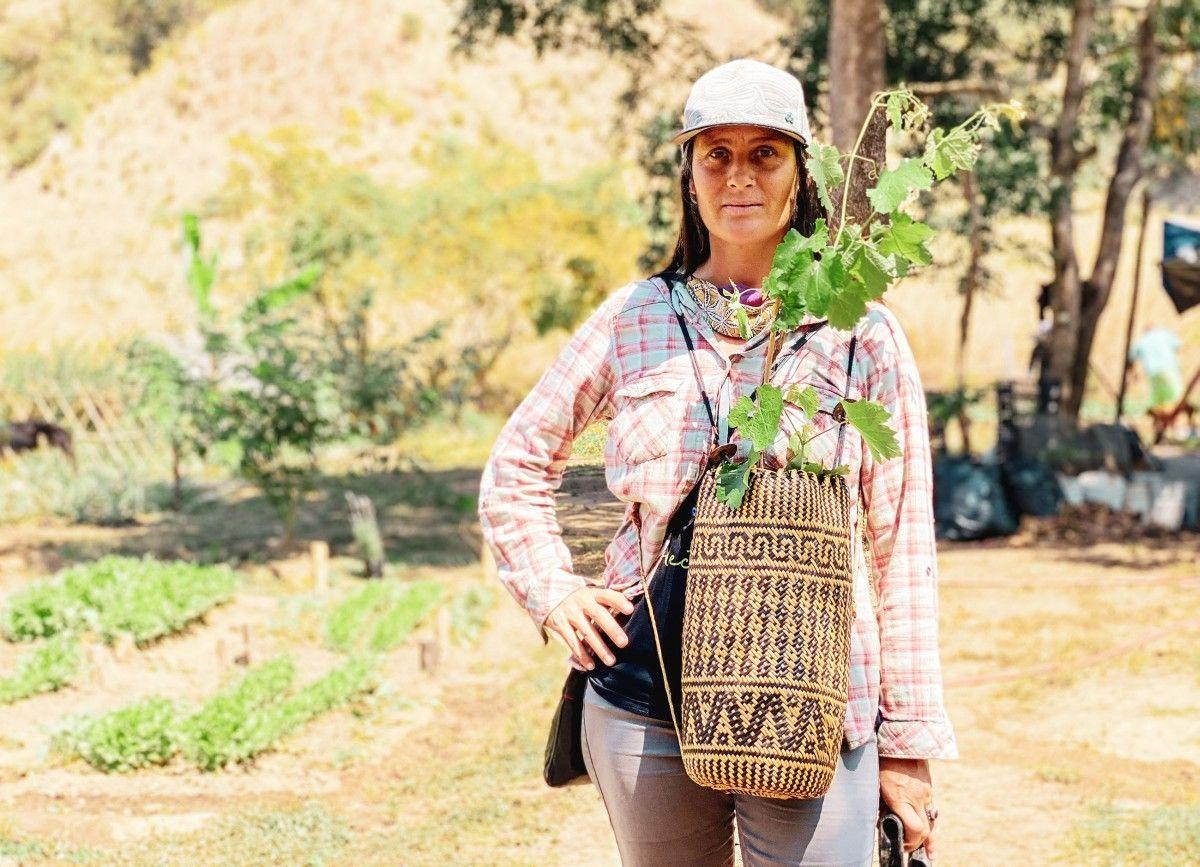 <b>Calina (43)</b> lebt seit 2013 in Mexiko, als Kind wanderte sie mit ihrem Vater in die USA aus und pendelt heute zwischen Kalifornien und Jalisco, wo sie Pilze, Kokosnussbäume und Gemüse anbaut.. Das Pendeln stellte frühere Beziehungen vor Herausforderungen, weswegen Calina sich auf einen Mann freut, der ihre Reiseleidenschaft teilt. <b>Hobbies:</b> Segeln, Tauchen, Surfen und Fischen