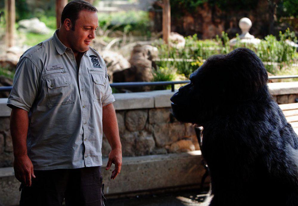 Zwischen Tierpfleger Griffin (Kevin James) und Gorilla Bernie entwickelt sich eine echte Männerfreundschaft.