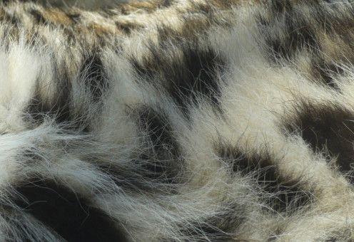 Tierhaare sind zum Einen schön, farbenfroh und schillernd, zum Anderen schützend, tarnend und wärmend.