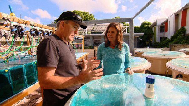 Bernice Notenboom mit Prof. Hoegh-Guldberg vor einem Korallenexperiment zum Klimawandel auf Heron Island
