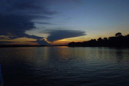 Bernice Notenboom ist auf dem Amazonas unterwegs, um dort die Regenwälder zu erkunden.