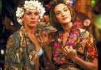 Feiern ausgelassen: Julia Roberts als Maggie Carpenter, Joan Cusack als Peggy Flemming