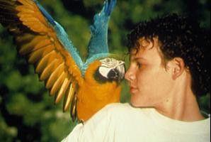 Heißa, du beißt aber deftig ins Öhrchen: Jamie  Croft und der plappernde Papagei