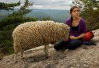Jenny (Henriette Richter-Röhl) kann sich und das Schaf nicht allein befreien