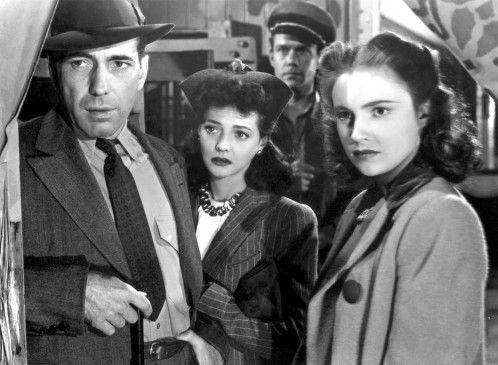 Nick Coster (Humphrey Bogart) hat einen jungen Dompteur zu einer wilden Bestie in den Käfig geschickt