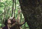 Carla (Aline Küppenheim) und Ulrik (Diego Noguera) sind von der Erlebniswelt Wald beeindruckt