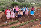 Die Passagierinnen Gabi und Julia besuchen das Zulufadder Projekt in Suedafrika, eine Wohltaetigkeitsorganisation, die sich auf Bildung und nachhaltige Projekte fuer Kinder und Jugendliche aus laendlichen Gebieten in Suedafrika konzentriert.  In Eshowe treffen sie Nick, den Verwalter von Zulufadder.