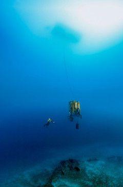 """Üppige Gärten und die schönsten Korallenriffe befinden sich jenseits der üblicherweise betauchbaren Tiefen: in der """"Dämmerungszone"""", wie der Raum zwischen 60 und 120 Metern Tiefe genannt wird."""