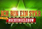 """Das Logo zu """"Ich bin ein Star - die grosse Dschungelshow""""Die Verwendung des sendungsbezogenen Materials ist nur mit dem Hinweis und Verlinkung auf TVNOW gestattet."""