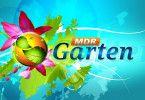 MDR-Garten