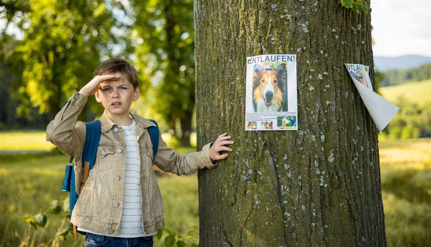 Flo (Nico Marischka) gibt die Hoffnung niemals auf, dass Lassie zu ihm zurückkehrt.