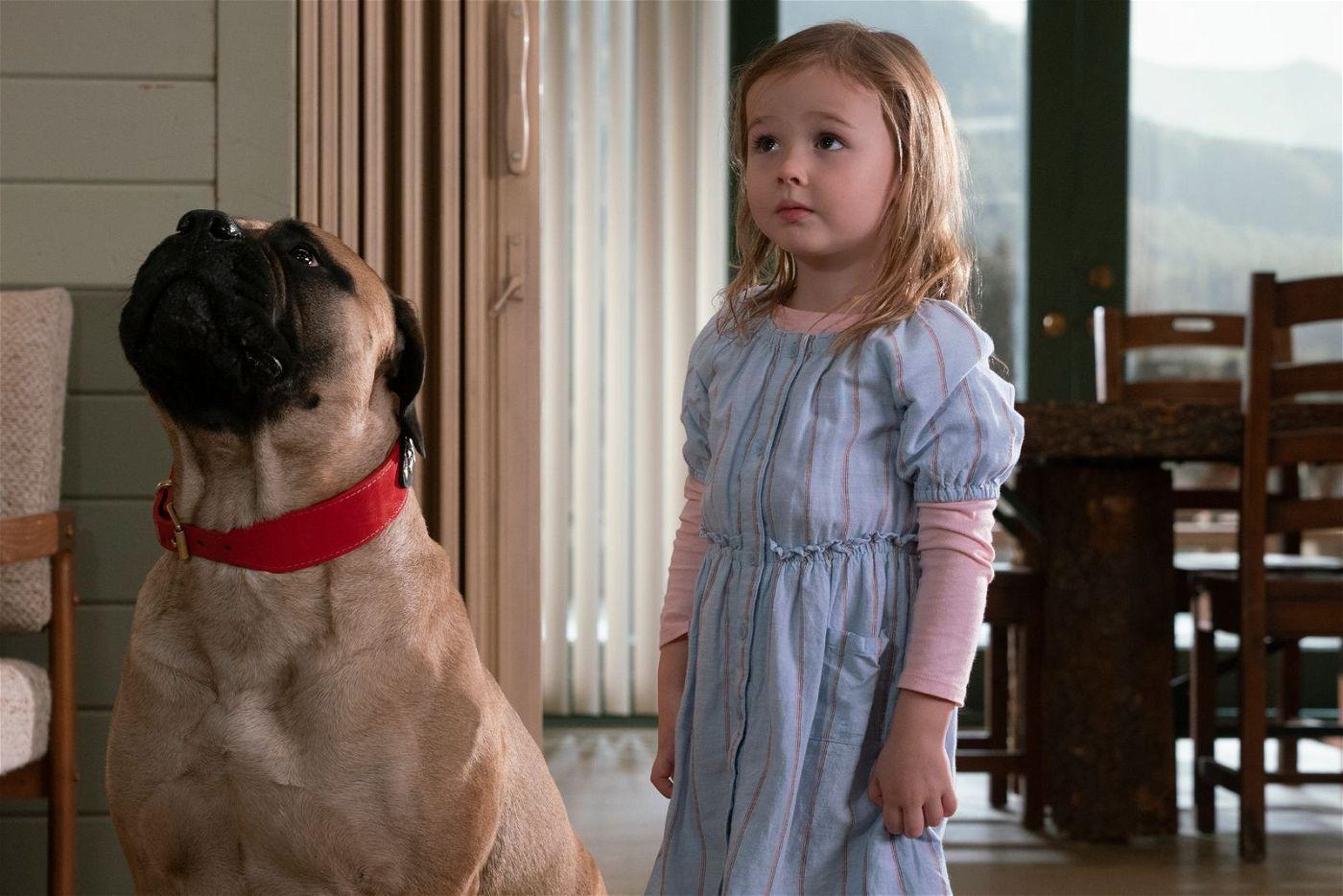 Damit haben die Männer nicht gerechnet: Die kleine Zoey (Finley Rose Slater) hat tatsächlich den rauen Boxer von Jake unter Kontrolle.