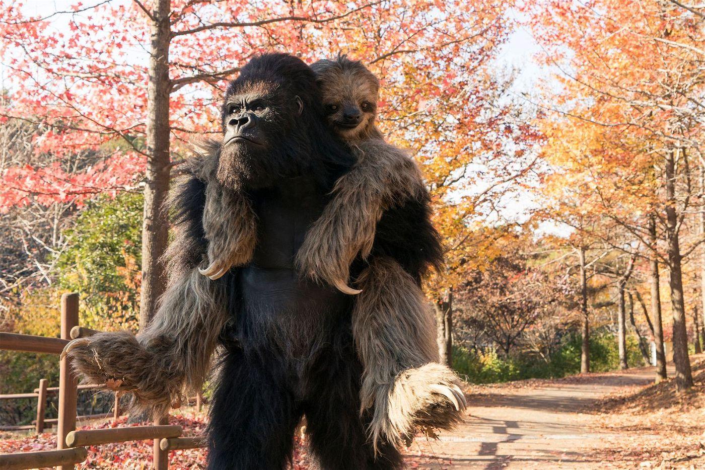 Gorilla (Kim Sung-oh) und Faultier (Jeon Yeo-been) sind zusammen überglücklich.