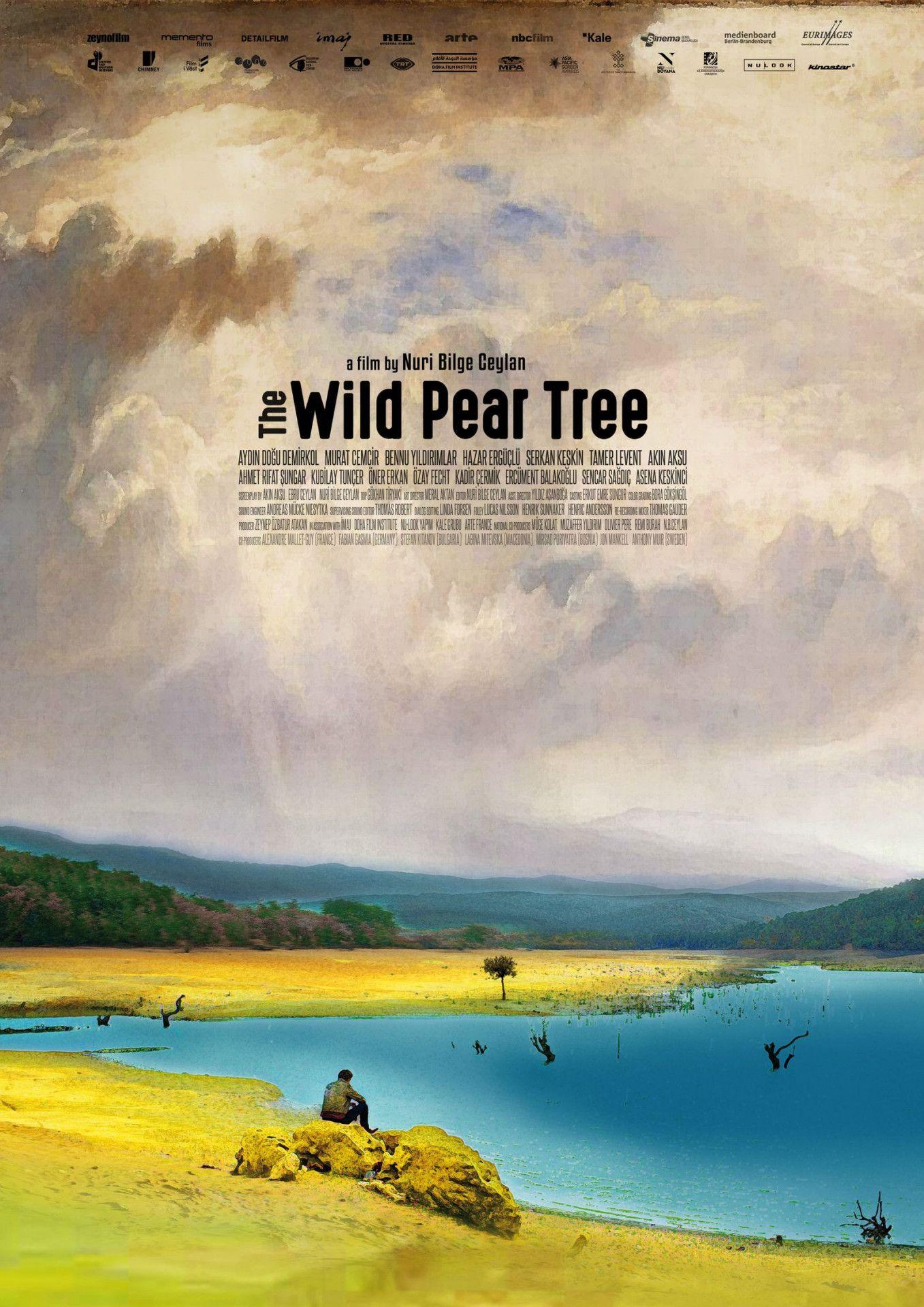 """""""The Wild Pear Tree"""" ist ein kunstvoller, melancholischer Film aus der Türkei."""