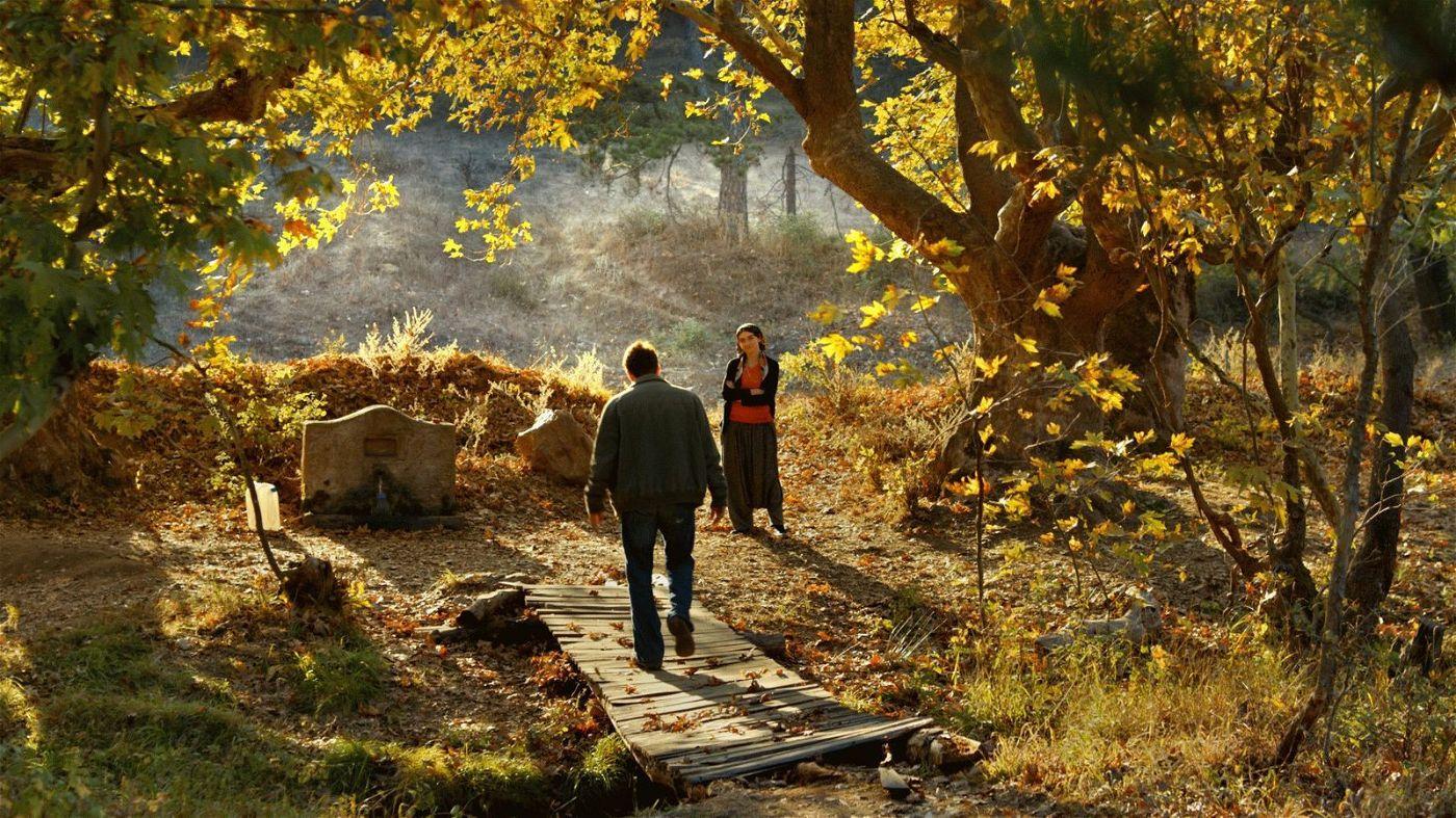 In einem kleinen Wald begegnet Sinan (Dogu Demirkol) seiner Jugendliebe (Hazar Ergüclü) wieder.
